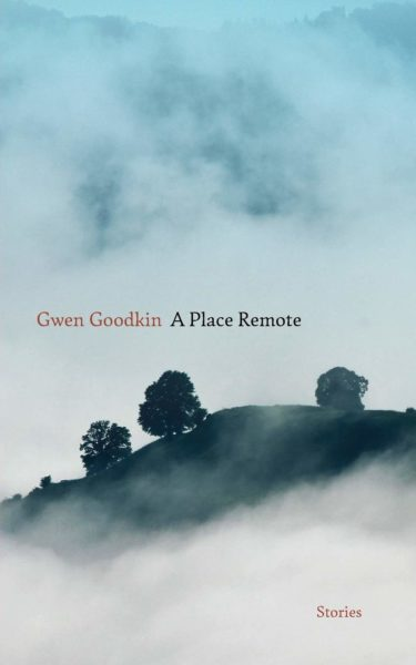 Cover of A PLACE REMOTE: STORIES by Gwen Goodkin